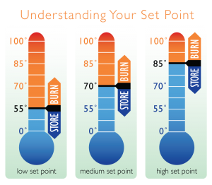 Understanding Your Set Point