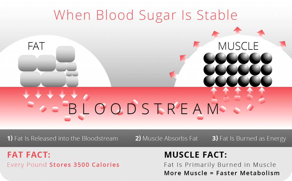 When Blood Sugar is Stable