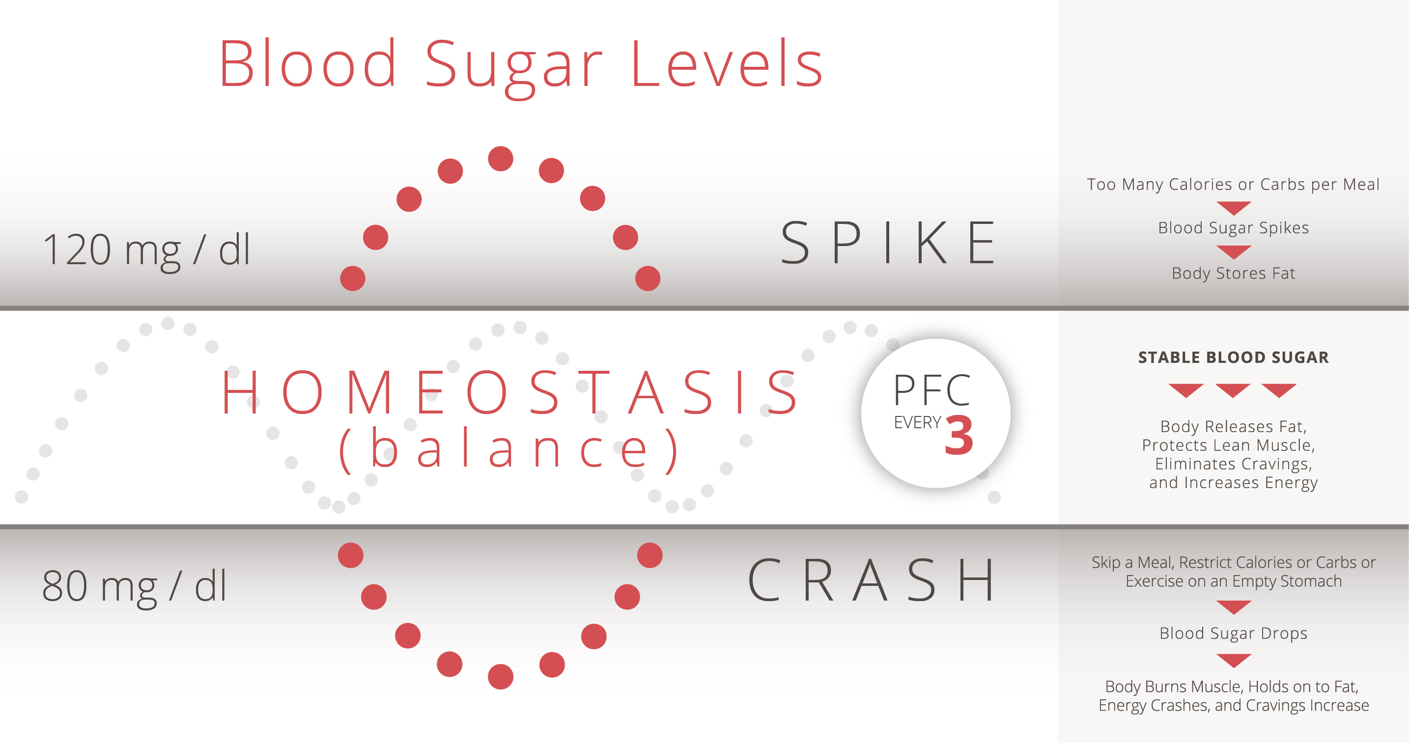 Blood Sugar Levels (maintaining homeostasis)