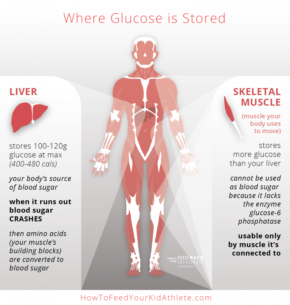 Where Glucose is Stored