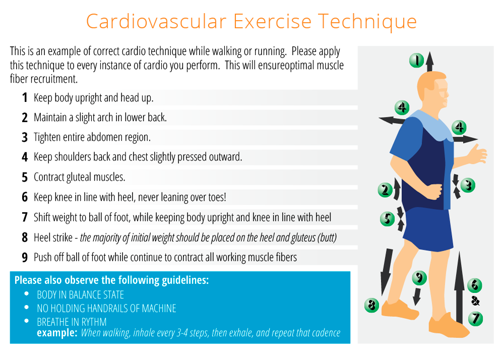 Cardiovascular Exercise Technique